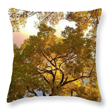 Android Throw Pillows