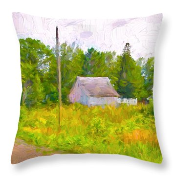 Little Barn Redone In Minnesota Throw Pillow