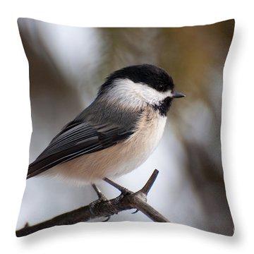 Little Beauty Throw Pillow by Bianca Nadeau