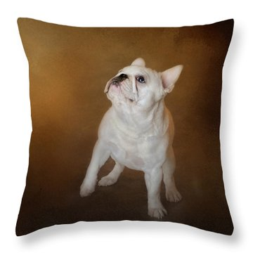 Little Beggar - White French Bulldog Throw Pillow