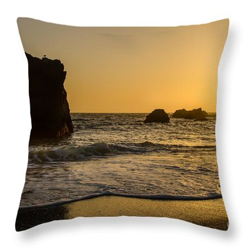 Throw Pillow featuring the photograph Little Bird by CML Brown