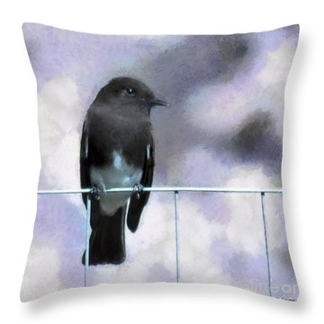 Little Black Phoebe Throw Pillow