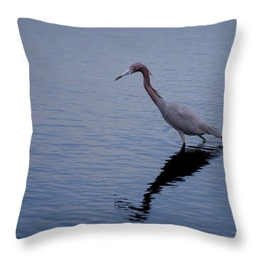 Throw Pillow featuring the photograph Little Blue Heron On The Hunt by John M Bailey