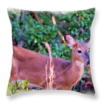 Little Buck Stepping Out Throw Pillow