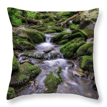Little Bush Kill Throw Pillow