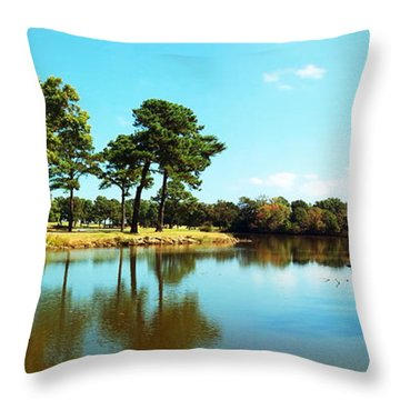 Throw Pillow featuring the photograph Little Creek by Angela DeFrias