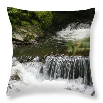 Little Creek Falls Throw Pillow