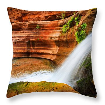 Little Deer Creek Fall Throw Pillow by Inge Johnsson