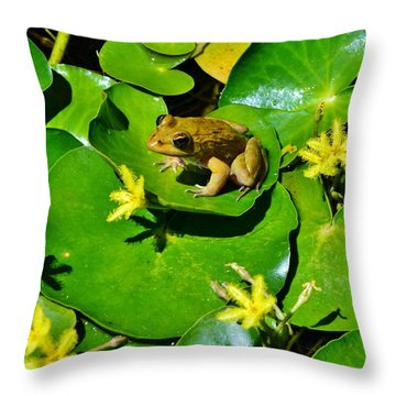 Little Frog Throw Pillow