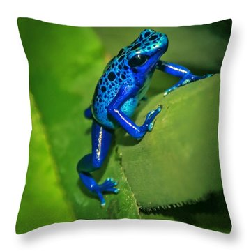 Little Garden Friend Throw Pillow