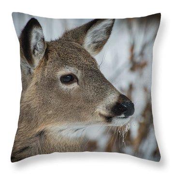 Little Guy Throw Pillow