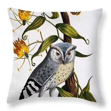 Little Horned Owl, From Indian Zoology Throw Pillow