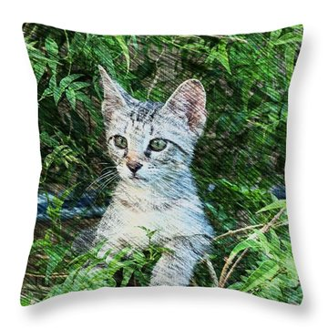Little Kitten Throw Pillow