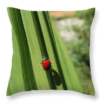 Ladybird Throw Pillow by Cheryl Hoyle