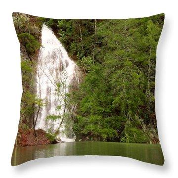Little Laurel Branch Falls Landscape Throw Pillow