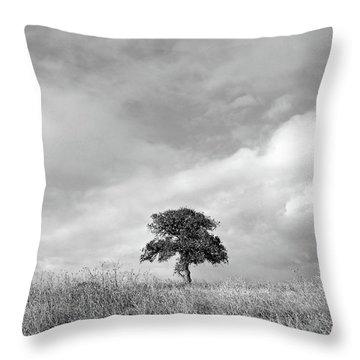 Little Lone Oak Tree Throw Pillow