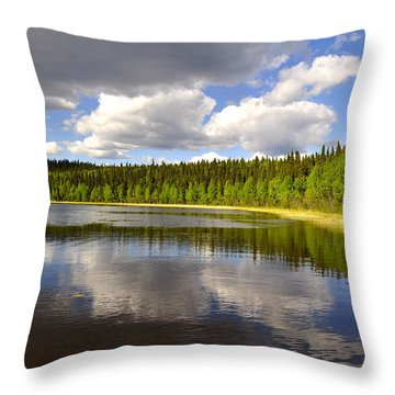 Throw Pillow featuring the photograph Little Lost Lake by Cathy Mahnke
