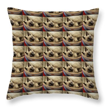 Little Miss Blue Eyes 35 Throw Pillow by Andee Design