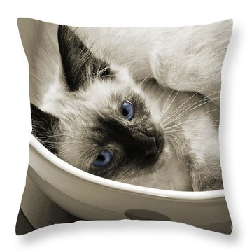 Andee Design Animals Throw Pillows