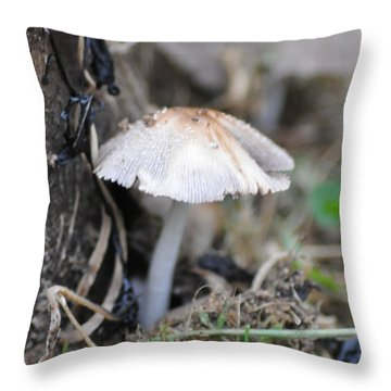 Little Mushroom Throw Pillow by Bill Cannon
