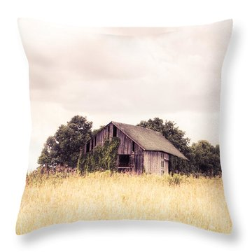 Throw Pillow featuring the photograph Little Old Barn In A Field - Landscape  by Gary Heller