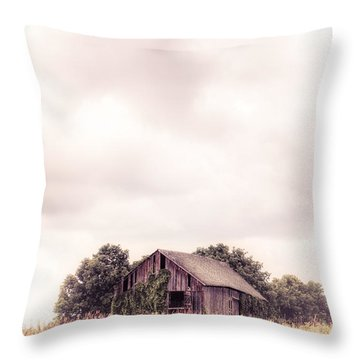 Throw Pillow featuring the photograph Little Old Barn In The Field - Ontario County New York State by Gary Heller