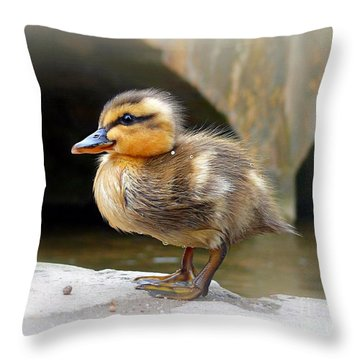 Little Quack Throw Pillow by Morag Bates