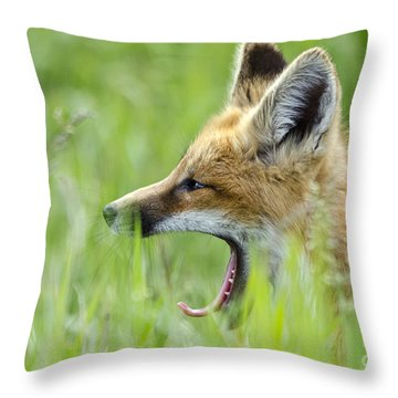 Little Red Sleepy Head Throw Pillow