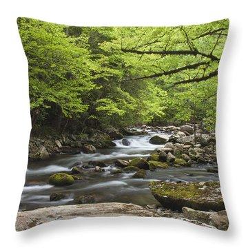 Little River Respite Throw Pillow
