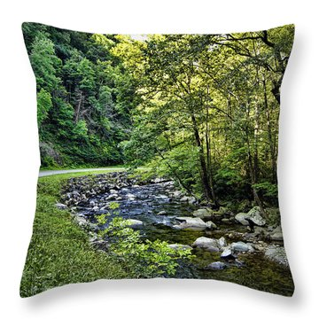 Little River Road Throw Pillow