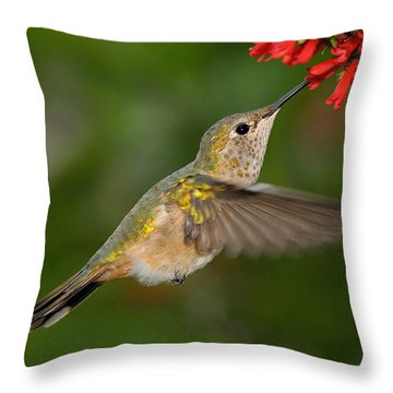 Little Sipper Throw Pillow
