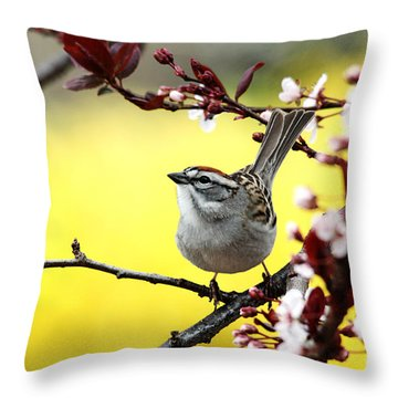 Throw Pillow featuring the photograph Little Sparrow by Trina  Ansel