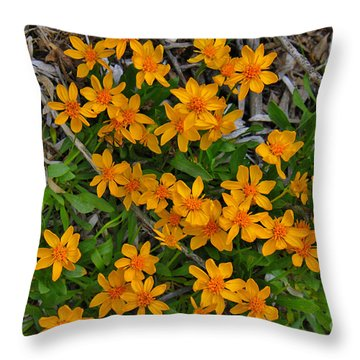 Throw Pillow featuring the photograph Little Sunflower In The Mountains by Janice Rae Pariza