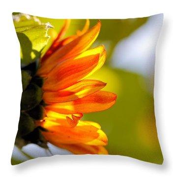 Little Sunshine Throw Pillow by Katherine White