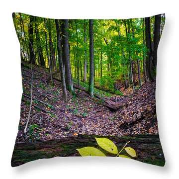 Little Valley Throw Pillow
