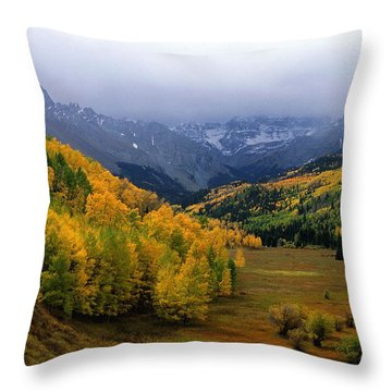 Little Meadow Of The Sublime Throw Pillow