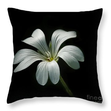 Little White Flower Throw Pillow