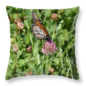 Live Laugh Love Butterfly Throw Pillow by Inspired Arts
