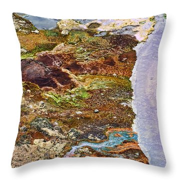 Living Colors Throw Pillow