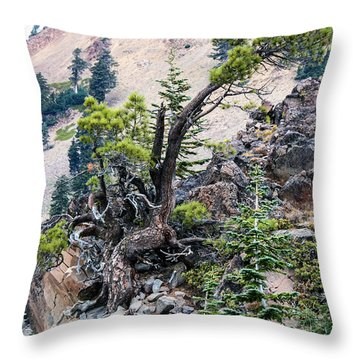 Living Dangerously Throw Pillow