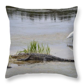 Living In Harmony Throw Pillow by Judith Morris