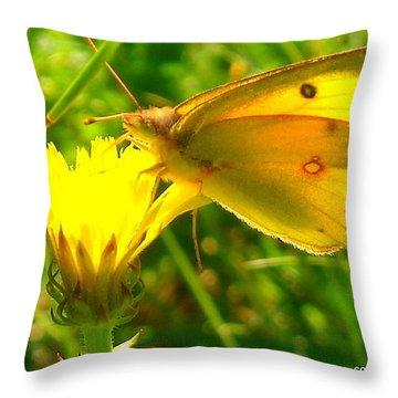 Living In The Light Throw Pillow
