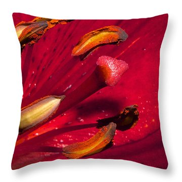 Living Inside A Lily Throw Pillow by Phyllis Denton