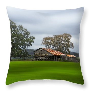 Living On The Land 0002 Throw Pillow by Kevin Chippindall