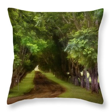 Living On The Land 01 Throw Pillow
