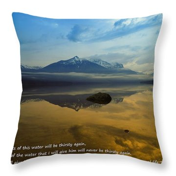 Living Water Throw Pillow by Jeff Swan