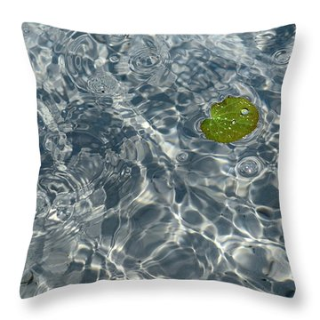 Throw Pillow featuring the photograph Living Water by Linda Mishler