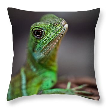Lizard Throw Pillow