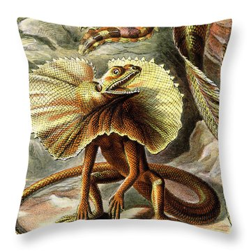 Lizard Detail IIi Throw Pillow by Unknown