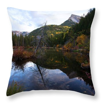 Throw Pillow featuring the photograph Lizard Lake by Jim Garrison